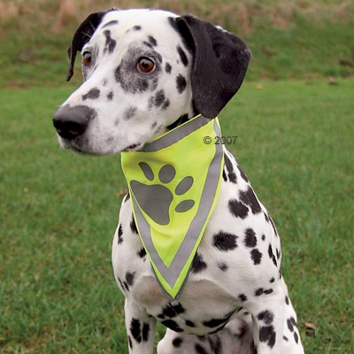 Cheap Bandanas - Reflective Safety Dog Bandana - Size M/L 44 X 24.5 Cm / 2.0 Cm