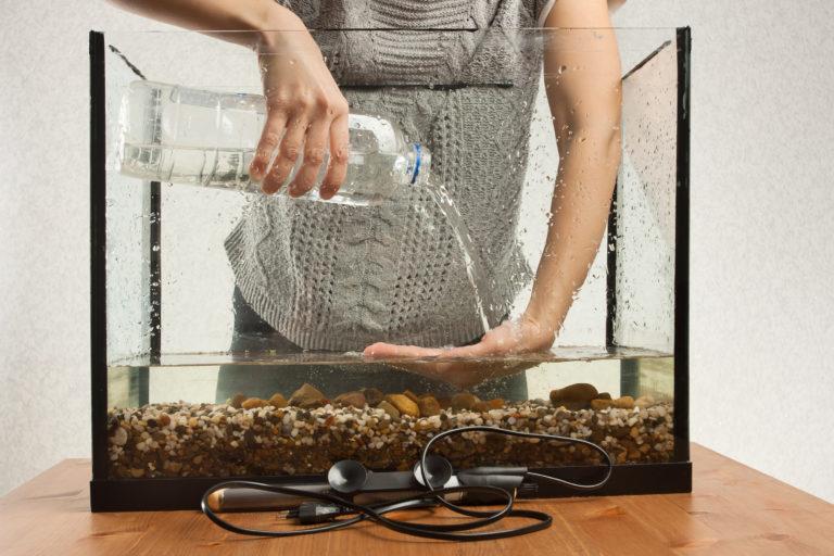 First Aquarium - choosing the right fish