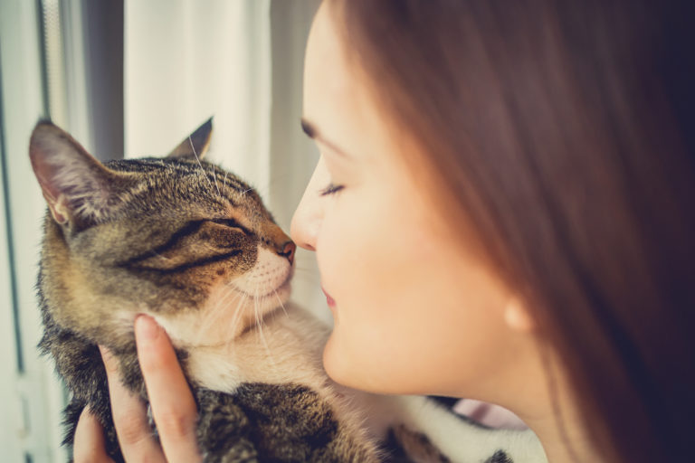 Cats are healthy for humans